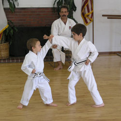 kaizen mixed martial kids self defence