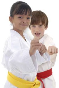 Kids Martial Arts In Wyndham Vale