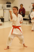 Shotokan Karate Middle Block 11 - 15 Year Old Class