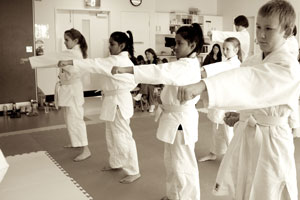 Shotokan Karate grading teen