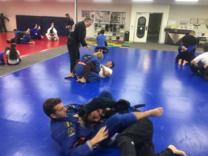 Adults-training-BJJ-Wyndham-Vale-2