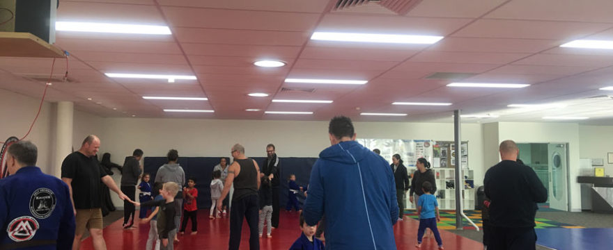 3 to 5 Year Old Kids Martial Arts Classes | Manor Lakes